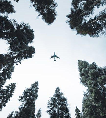 How Airplanes Can Minimize Their Environmental Impact